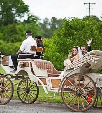 carriage rentals nashville