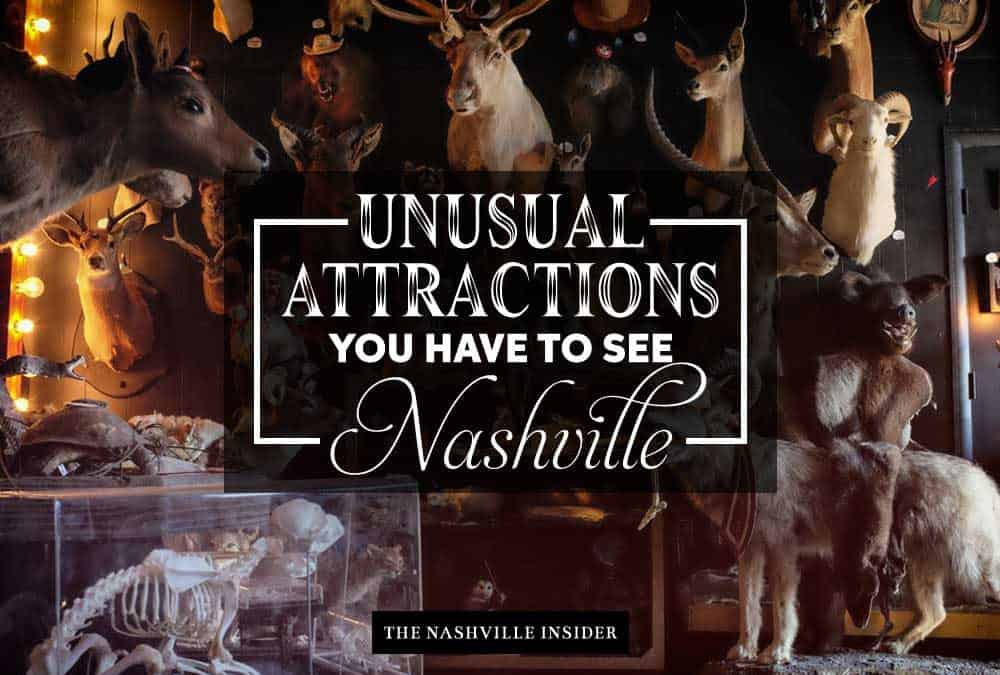 Unusual Attractions You have to See In Nashville - The Nashville Insider