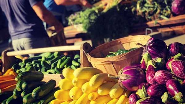 Nashville Farmers Market - Things to do in Germantown