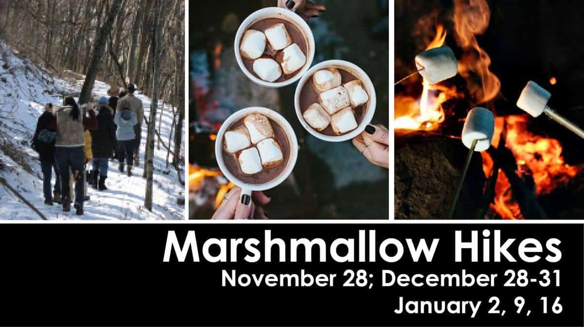 OWL Hill Marshmallow Hike